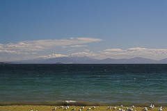 Lake Taupo (peterjwaldeck) Tags: newzealand taupo hawkesbay