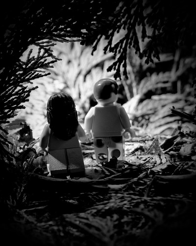 The Walk to Paradise Garden (by Balakov)
