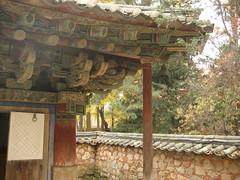 IMG_0531 (blue.tengu) Tags: korea seoul folkvillage suwon