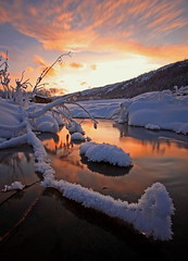 Winters Warmth (Wolfhorn) Tags: winter sunset snow cold ice nature water alaska creek landscape wilderness naturesfinest addictedtoflickr abigfave overtheexcellence ultimteshot