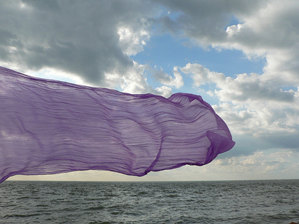 PurpleSeaFlag