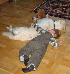 LOVE (Ingrid0804) Tags: boy dog cute love dogs kids goldenretriever tender tenderness bestfriends aboyandadog saariysqualitypictures touchingkidsanddogs goldenretrieverwithkids