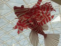 Piata Rojo pez (Jos Lira) Tags: navidad