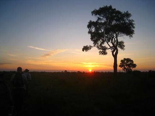 sunrise over the delta