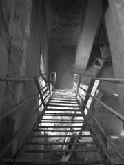 ColtivARte - Acuto BN 83 Ex-Cava (21.03.2010) (mik7720) Tags: bw italy italia wb olympus bn scala miki cava lazio distruction abbandono schody wlochy acuto e400 kamieniolom excava mik77 mik7720 coltivarte