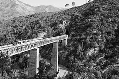Last train to trancentral (Allard One) Tags: bridge trees blackandwhite bw france mountains monochrome architecture train spring nikon zwartwit corte corsica may viaduct frankrijk bergen mei portfolio fullframe gustaveiffel lente trein venaco 1892 2011 vivario lacorse d700 hautecorse nikond700 nikkor2470mmf28 nikonfx pontedelvecchio allardone niksilverefexpro allard1 dieselpoweredtrain viaducduvecchio vecchioviaduct chemindeferdelacorse allardschagercom