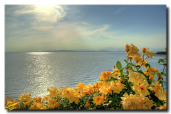 Fanari shore ... HDR