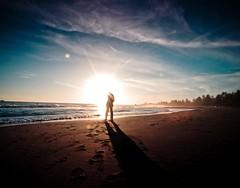 ant farm (pimpdisclosure) Tags: sunset shadow sun selfportrait beach silhouette sand pimp brookingsoregon pimpexposure part69 thepimpchronicles pimpdisclosure irockedthefuckingdaylightsoutofmyrented918mmwideanglelens yesthisshotwastakenat9mm18mm35mmequivalentwithmyolympuscamera thelightingatthisparticularbeachwasexceptionallygreat howincredibleisthedetailhereiusedahighpassfilteronsoftlightblendingmodeonthesandonlytobringoutthecontrast itookeverypictureusingmyslrcamerawithmyrentedwideangleconsequentlythismighthavebeenmybestphotoadventureeverdeathvalleybeingtheother icapturedcountlessgems