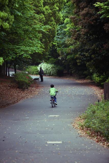 小道の自転車