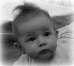 Molly Baby
