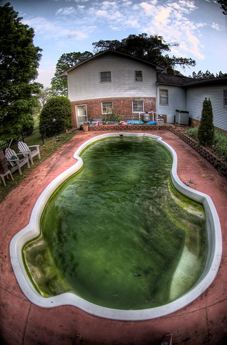 Foreclosed Home Pools Pose Environmental Risks Newsleak