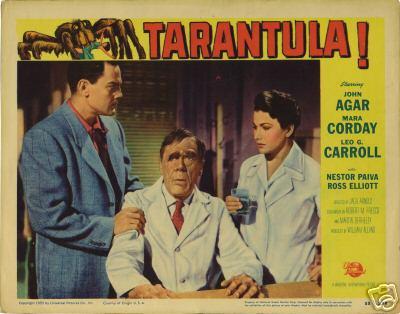 tarantula_lc.JPG