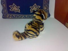 Irea's tiger cub