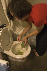 tossing the beans (Licorice Medusa) Tags: bathrooms leftovers toilets