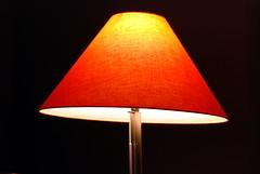 My Office Lamp