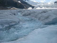 Athabascan Glacier melt creek (thomas pix) Tags: canada jasper columbia glacier banff athabasca icefield eyefi