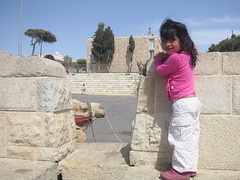Jerusalem (ayaok) Tags: animals kids israel palestine middleeast