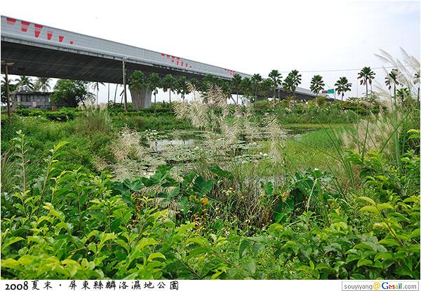 2008夏末‧屏東縣麟洛濕地公園