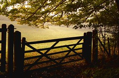 park gate (lancejacob) Tags: autumn october faversham mywinners theunforgettablepictures colourartaward sellingpark