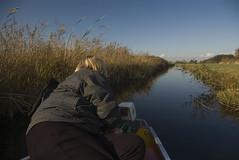 20081022_2272 72 dpi (Dick Aalders) Tags: giethoorn varen fluisterboot herfstvakantie