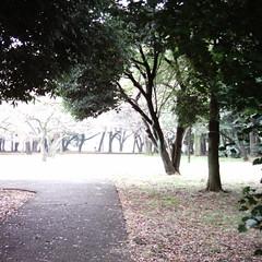 Promenade (MiniDigi)