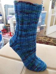 jitterbug parrot socks