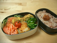 Super happy salmon bento (skamegu) Tags: fish rice salmon bento japanesefood tatertots tamagoyaki