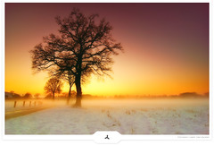 Winter's Coming Through (Gert van Duinen) Tags: winter red sky orange mist snow tree nature yellow misty landscape haze bravo scenery snowy digitalart scenic chapeau hazy 2008 landschaft soe dreamscape landschap vengeance coolshot hillocks justimagine dutchartist nikond80 colorphotoaward landschaftsaufnahme cresk tokinaatx124pro thesecretlifeoftrees alemdagqualityonlyclub alemdaggoldenaward goldenheartaward vosplusbellesphotos gertvanduinen