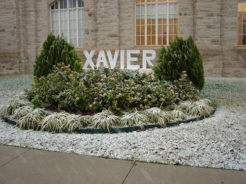 Snow at Xavier