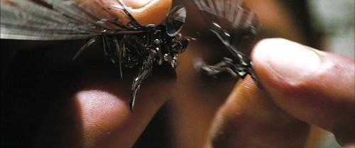 Transformers 2 trailer Insecticon