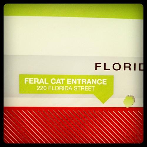 feral cat entrance