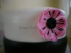 Double Barrel Cake (SweetToothDesserts (Carsedra)) Tags: barrel double anemone