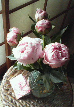母の日に「日比谷花壇」で贈った芍薬の花