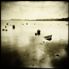 All bouyed up (Parcelpacker) Tags: film water holga cornwall hp5 bouys sunnyday palabra id11 digitallith lowbeach feock welcometothesunshinecoast