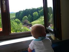 P1010321 (Hotzenwalder) Tags: zwarte woud oppenau