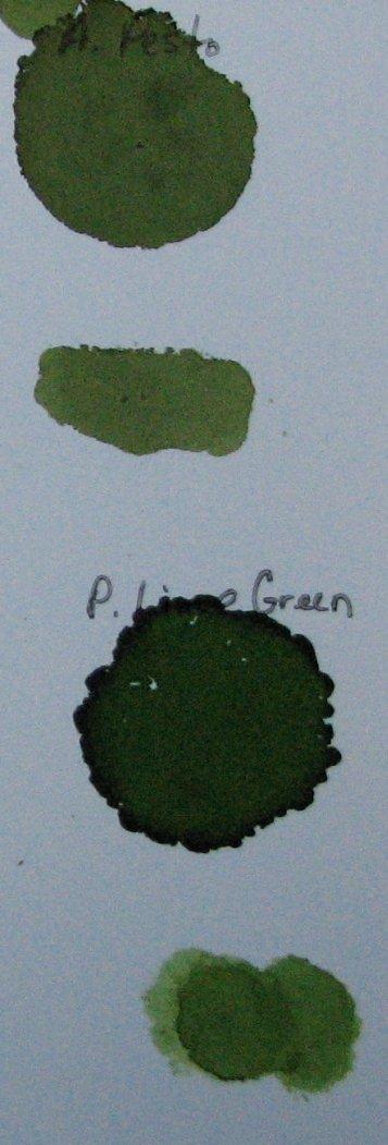 AI's003 - Green