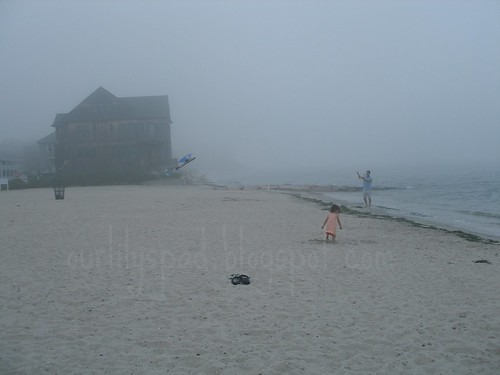 Can a kite fly in the fog