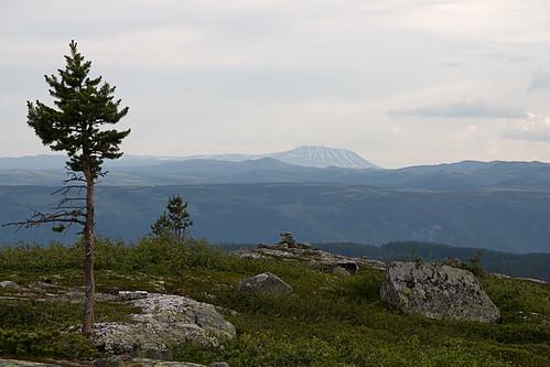 Utsikt fra Vardefjell