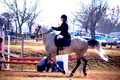 Deryn on an 'orsie (Axel Bhrmann) Tags: horse ride country moore jockey base halter whitehorse equine gallop horsejumping lightroom showjumping goldfrapp deryn girlrider horserding 10millionphotos womanrider womenriders tenmillionphotos inanda womenrider rideawhitehorse archee lightroompreset lightroompresets boerperd femalerider unlimitedphotos inandacountrybase axelbhrmann