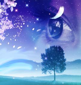 dream_a_z