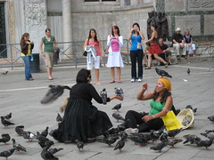 Pigeons in St Mark's Square V (sigfus.sigmundsson) Tags: venice italy pigeon dove pigeons feneyjar tala stmarkssquare