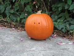 DarkPumpkin - 14