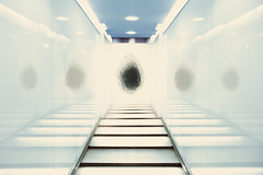 On The Origin Of Species (wilding.andrew) Tags: 2001 light white reflection art noir kubrick foil space corridor science future reflective cinematic futuristic metalic spaceage masterpiecesoflightdark