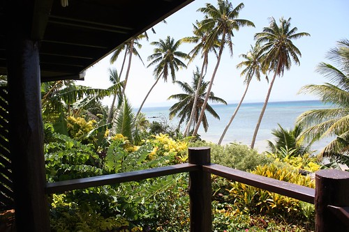 view in fiji