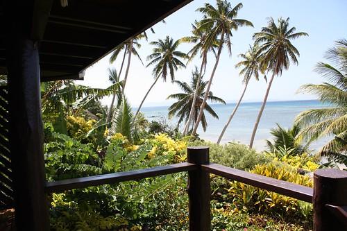 view in fiji