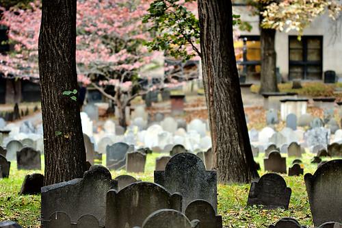 3D graveyard