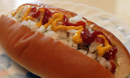Home made hotdog