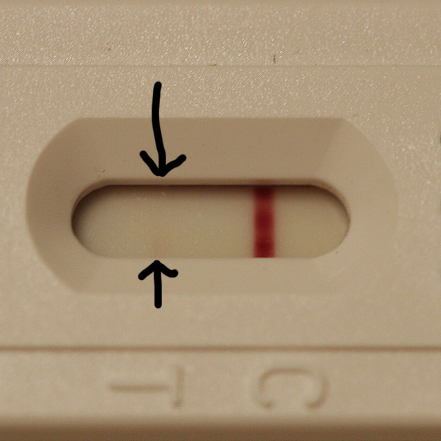 What does a faint pregnancy test look like