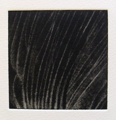 'Underside of a Mushroom - original mezzotint' - mezzotint on Flickr