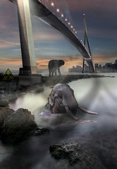 New Lands End (Anakronik) Tags: france building animals canon kenya dream manipulations photomontage dreamy elephants antibes hdr ville freelander futur capdantibes rve digitalblending efs1022usm anakronik arnaudg